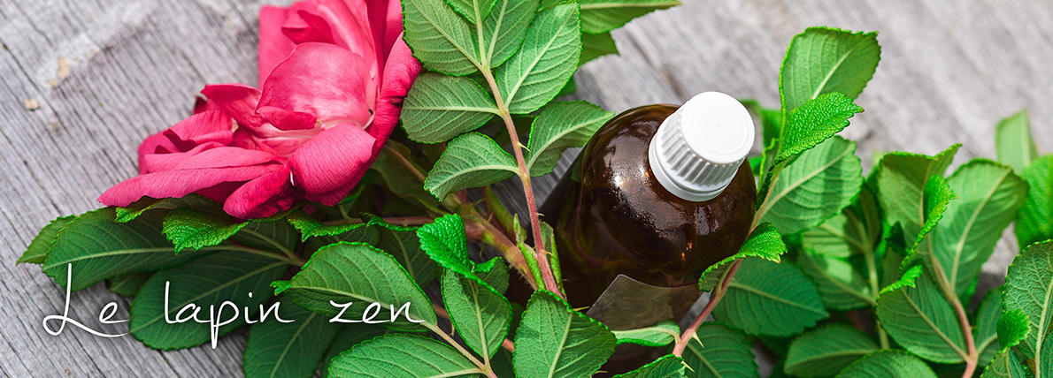 Soins aux huiles essentielles